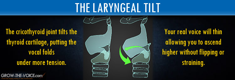 Maintaining a Neutral Larynx - How to Sing High Notes Without ...